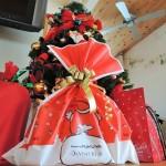 娘へのクリスマスプレゼントとケーキ