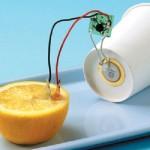 小学4年生の自由研究!レモンで電池を作り出してみる(理科実験)